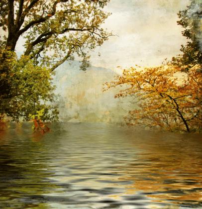 Wandtattoos: Natur im Herbst