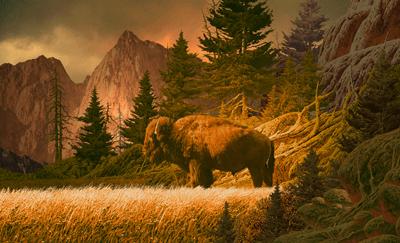 Wandtattoos: Buffalo