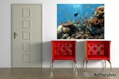 Wandtattoos: Boden des Meeres 3