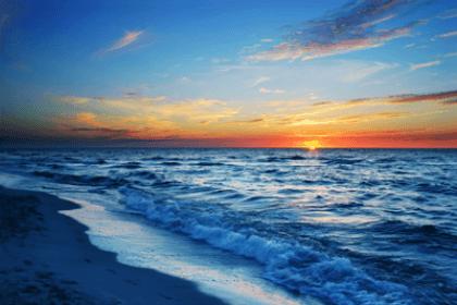Wandtattoos: Coast