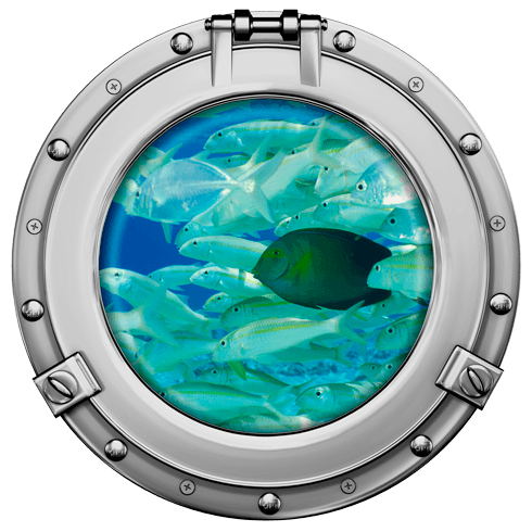 Wandtattoos: Schwarmfisch 2