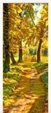 Wandtattoos: Tür pfad in einem Wald im Herbst 6