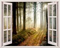 Wandtattoos: Bäume im Wald 3