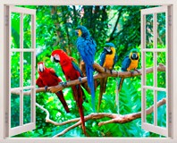 Wandtattoos: Papageien 5