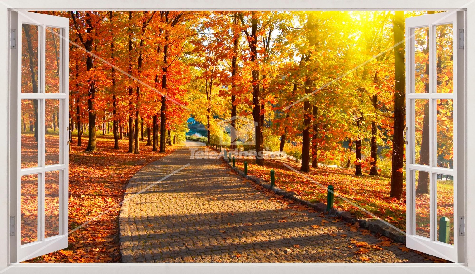 Wandtattoos: Panorama Straße Park im Herbst