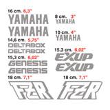 Aufkleber: kit Yamaha FZR 2