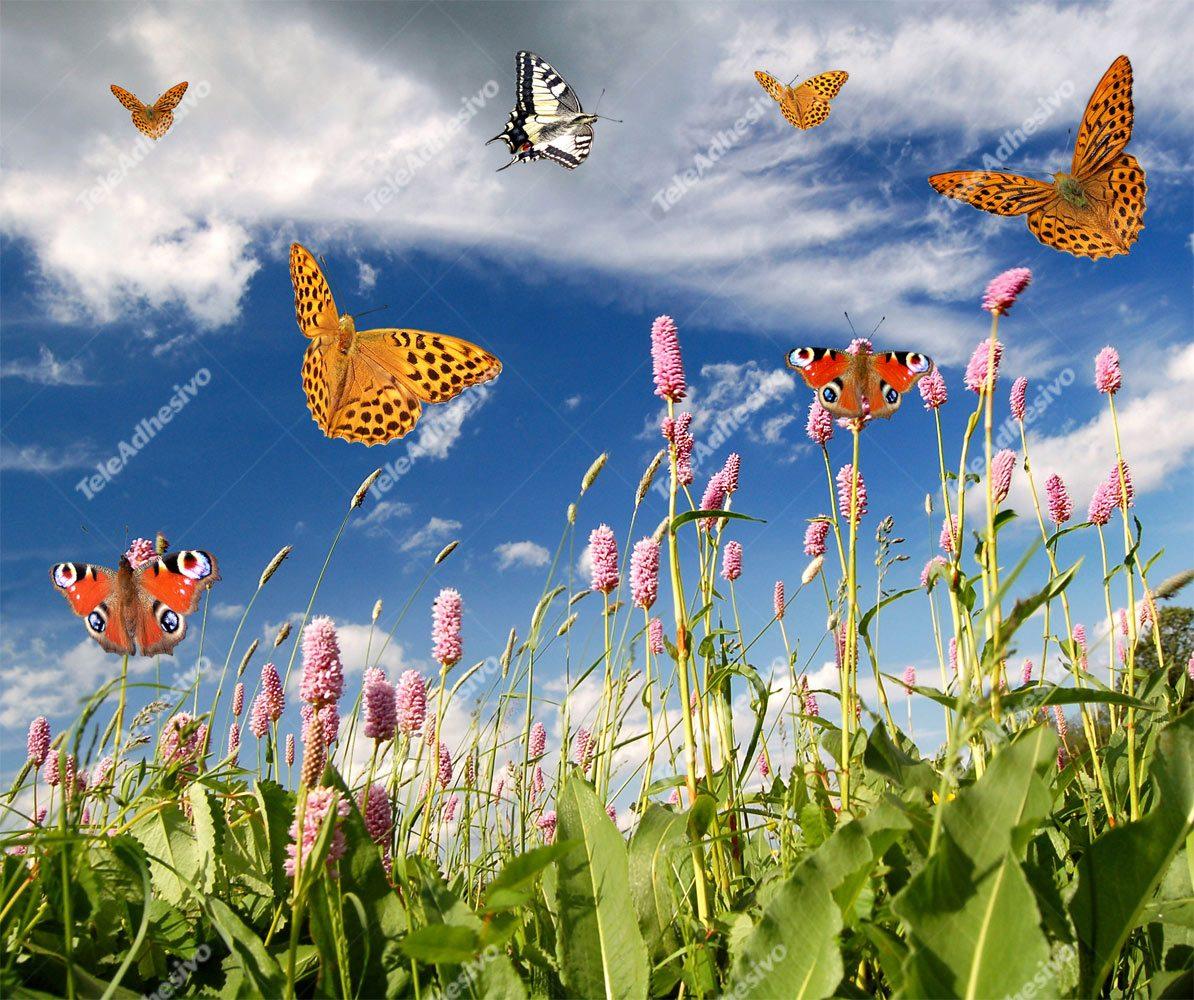 Fototapeten: Schmetterlinge