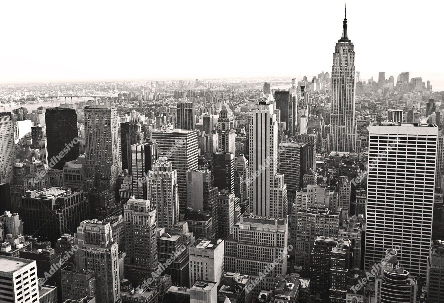 Fototapeten: Aerial view of New York
