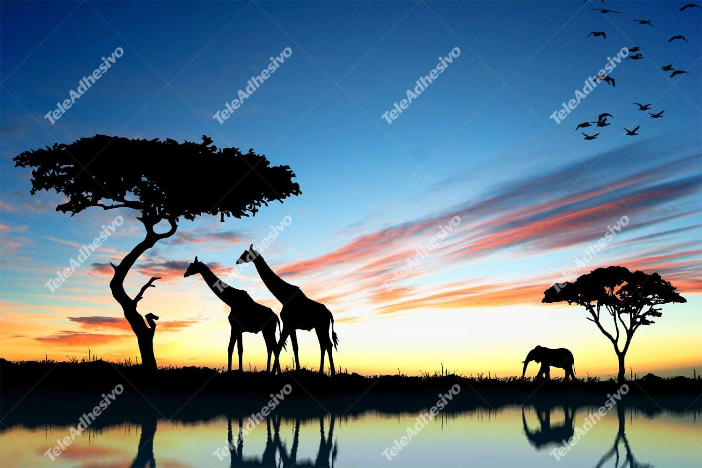 Fototapeten: Atardecer africano