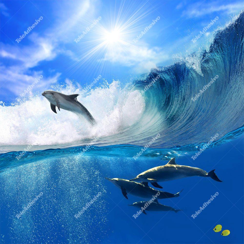 Fototapeten: Delfines