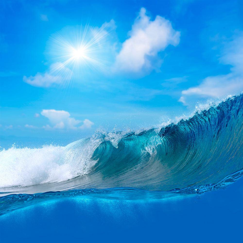 Fototapeten: surfen