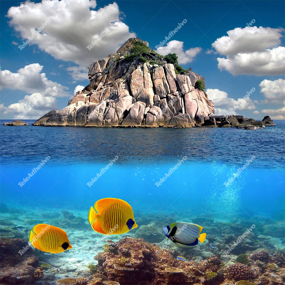 Fototapeten: Arrecife 4