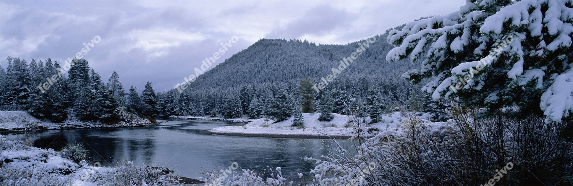 Fototapeten: Winter-Landschaft